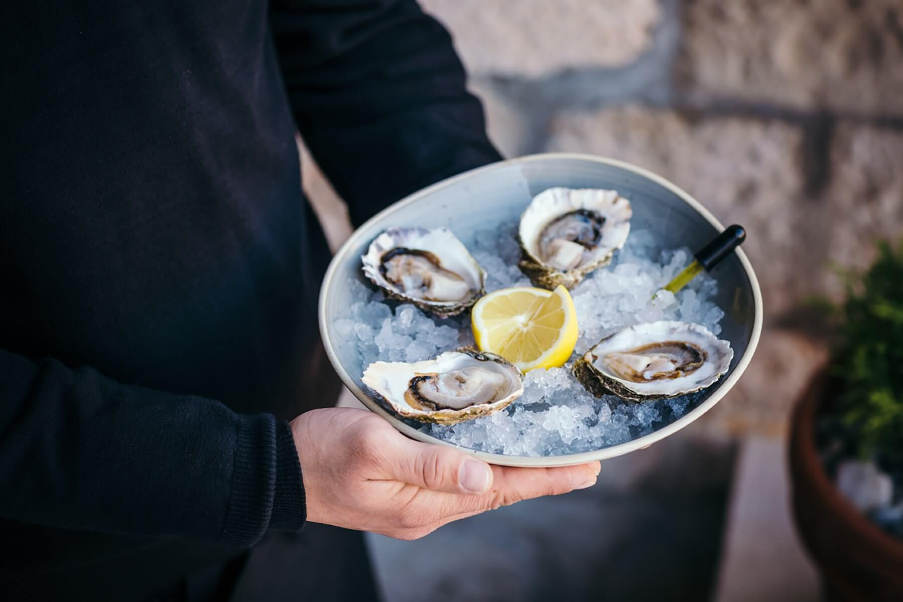 Oysters are harvested for generations is Dubrovnik region